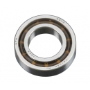 Ball Bearing Rear Redline 53/56